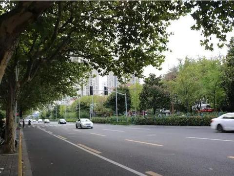 美爆了!上海长宁区虹桥路,在不在你家附近呢?