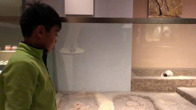 南京博物院里,也敢找茬?