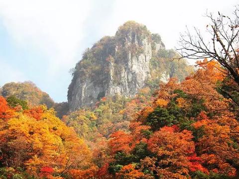 2020想去中国四川旅游景点:光雾山,唐家河,米仓山,千佛崖
