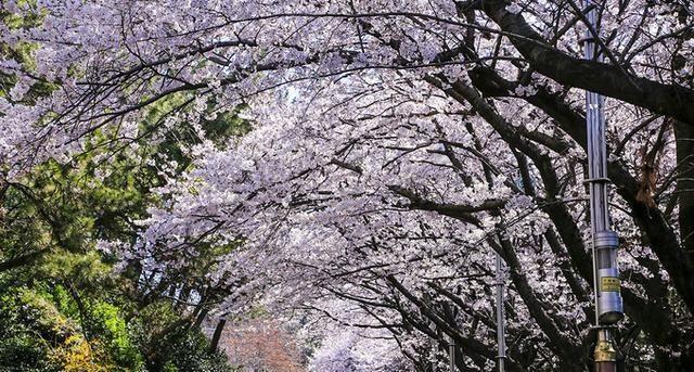 <strong>在那天的暴风雨中 釜山</strong>