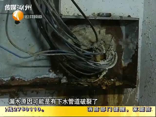 怡和家园:地下自行车库漏水多年 臭气弥漫