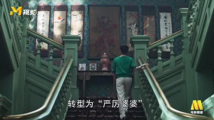《摘金奇缘》杨紫琼从功夫女星转型成豪门女主人