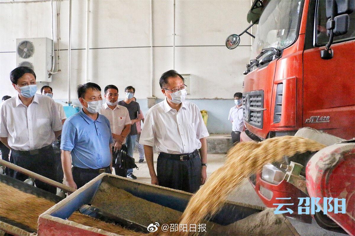 龚文密在邵阳县调研:高质量完成早稻收购任务