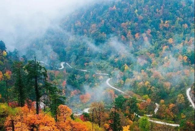 洪雅:浓浓的秋色