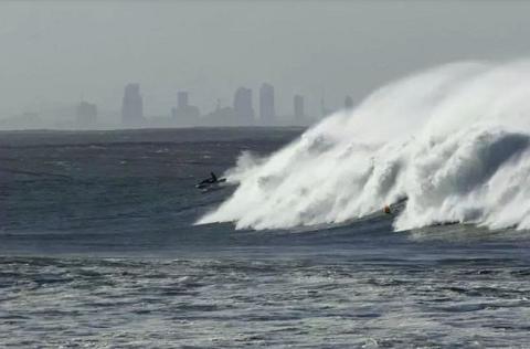 法媒:冲浪者在黄金海岸遭鲨鱼咬掉左腿伤重死亡