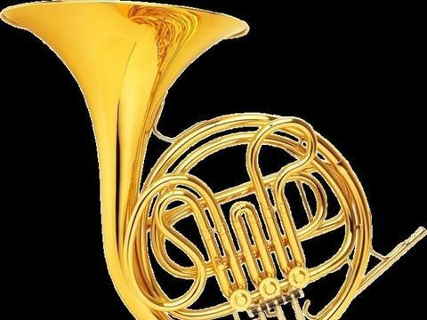 本地:禹州市管乐团成立了!