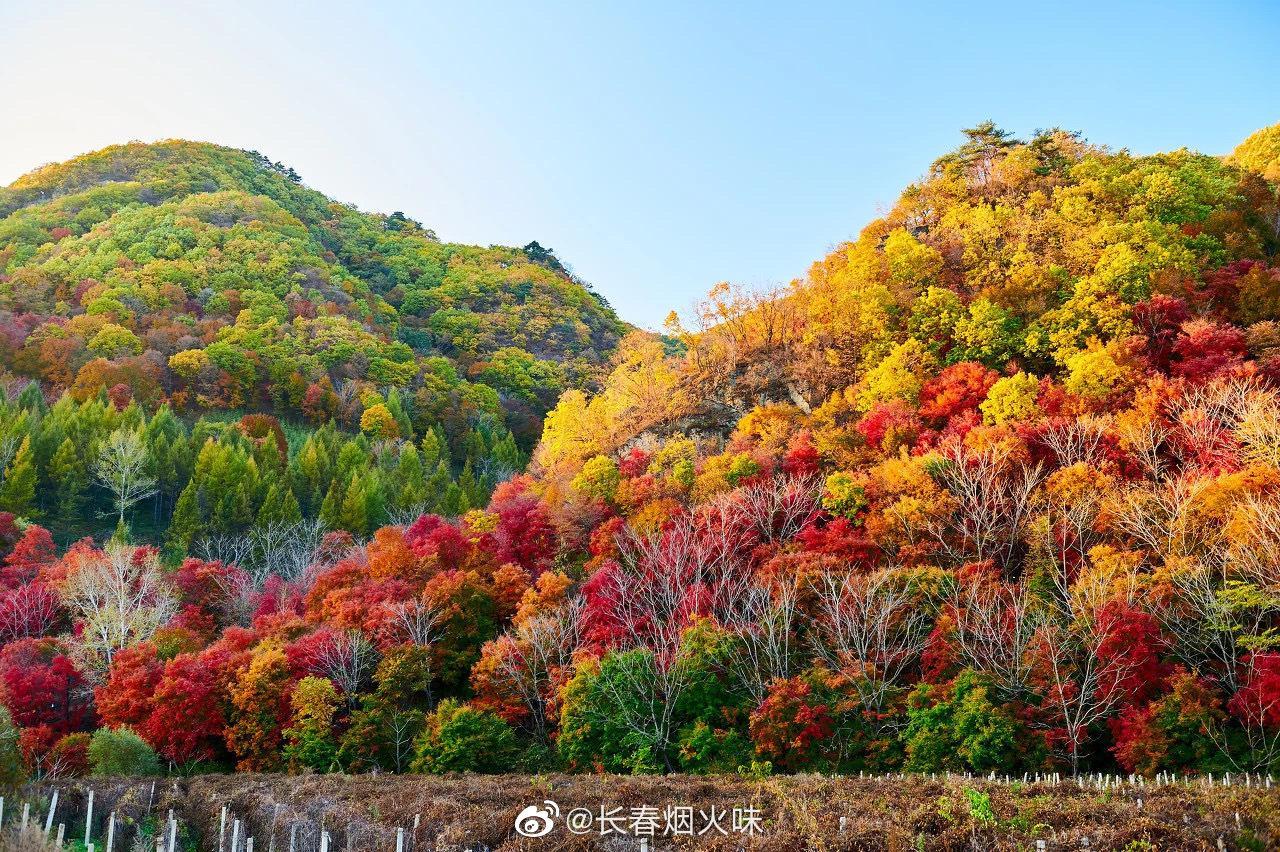 """关门山是老资格赏枫地,人称""""东北小黄山"""""""