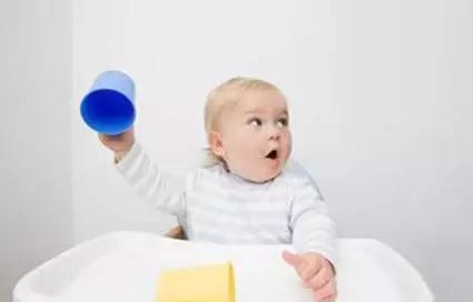 8个月宝宝从餐椅上扔东西是什么心理?四个原因影响孩子早期教育