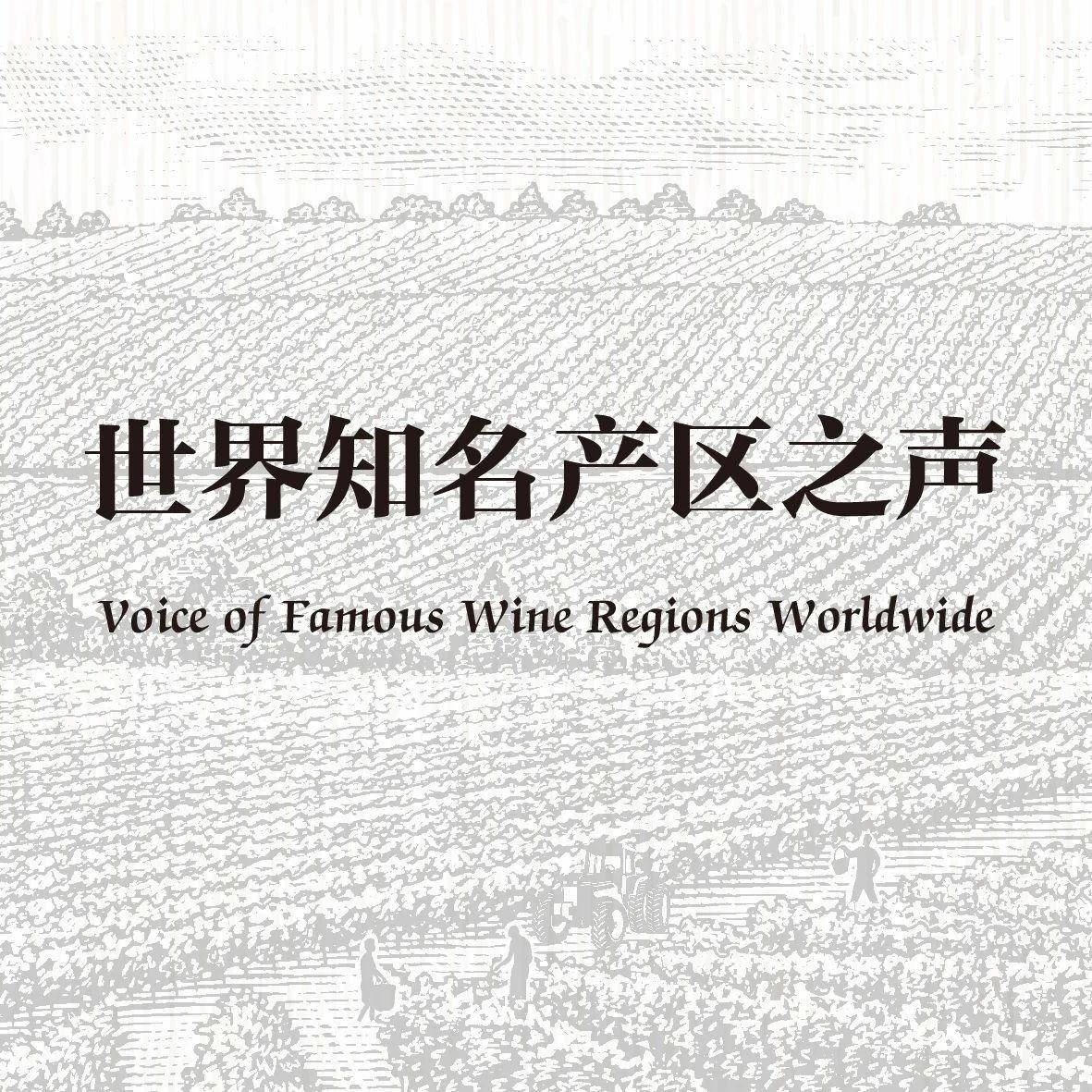 Manuela Liebchen:德国葡萄酒出口中国金额十年翻一倍,未来白葡萄酒上升空间更大丨世界知名产区之声④
