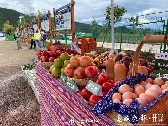 怒江兰坪县铜店镇:在一个农业工业园…