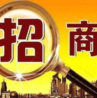 """辽宁交易团招商路演""""备战""""进博会"""
