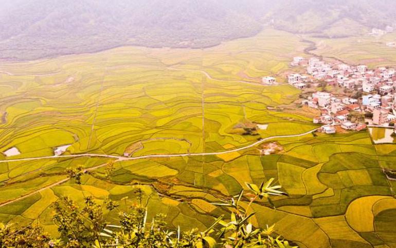 农业和农村必须走低耗、