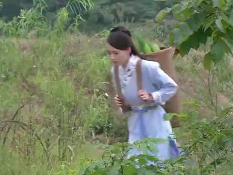 少林寺藏经阁:哑巴女如此贤惠,惹小和尚保护欲爆发,都想娶了她