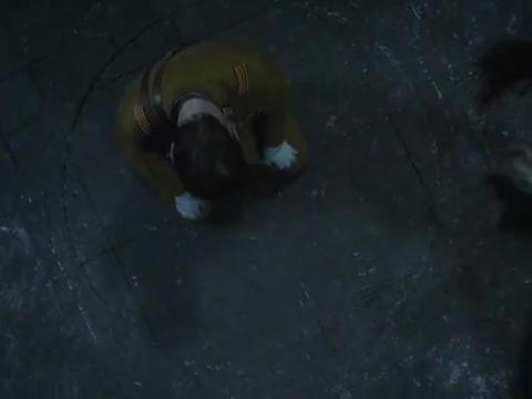 牧野诡事:金豹子把被抓来的人全部放走,并把实验室给炸掉