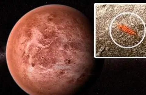 金星上发现生物尸体散发的磷化氢俗称鬼火