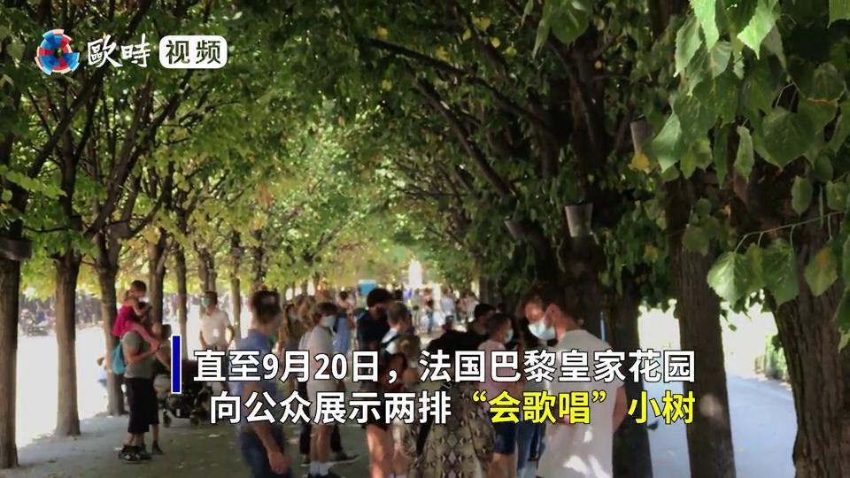 """巴黎皇家花园里的树""""会唱歌"""",人越靠近,声音越大"""