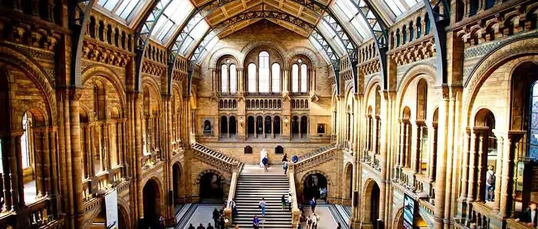当博物馆浓缩人类文明与历史时,总有被掠夺者遭时代抛弃