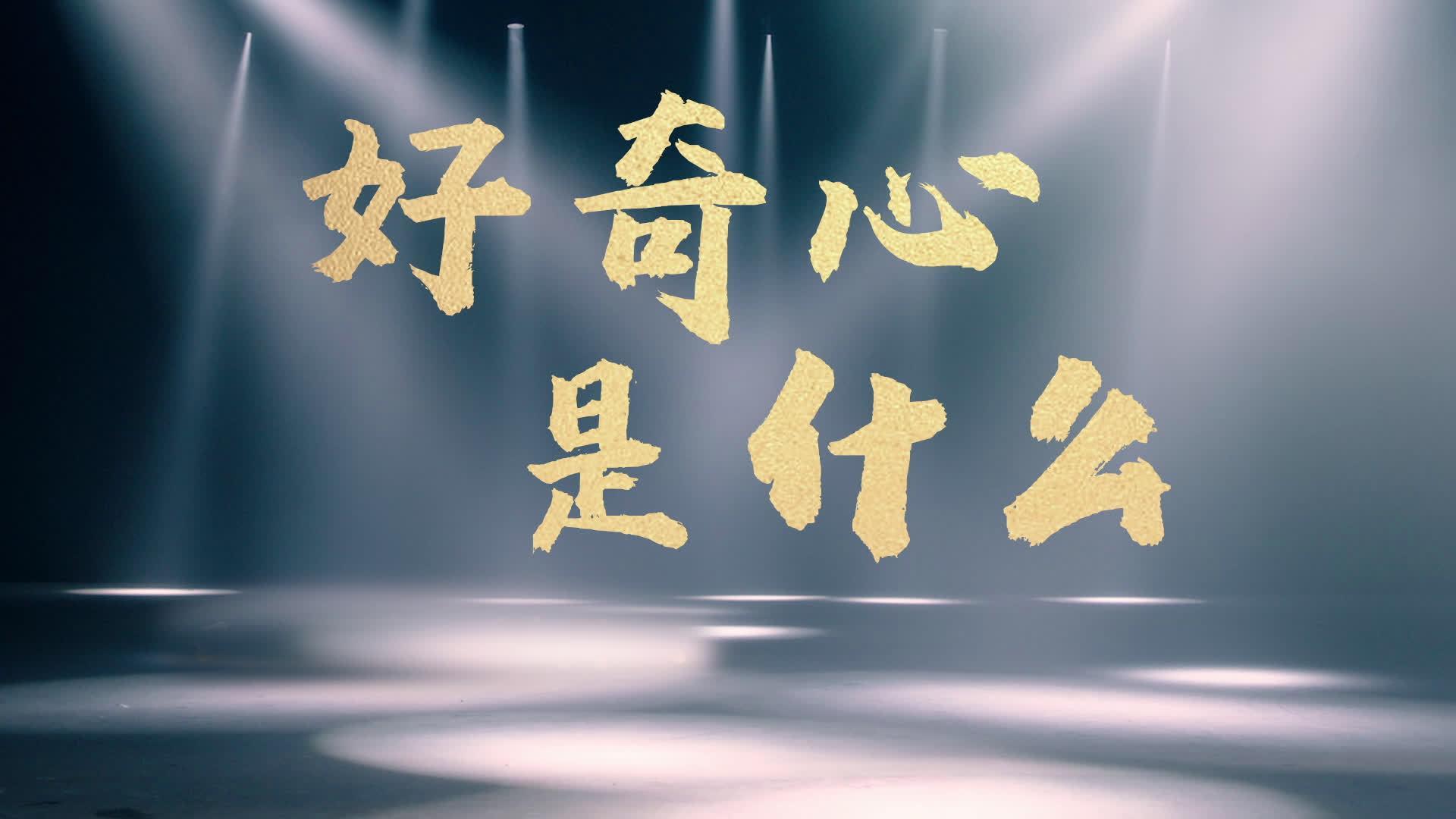 倪萍、陈鲁豫、邓亚萍、李银河、金宇澄首谈好奇心