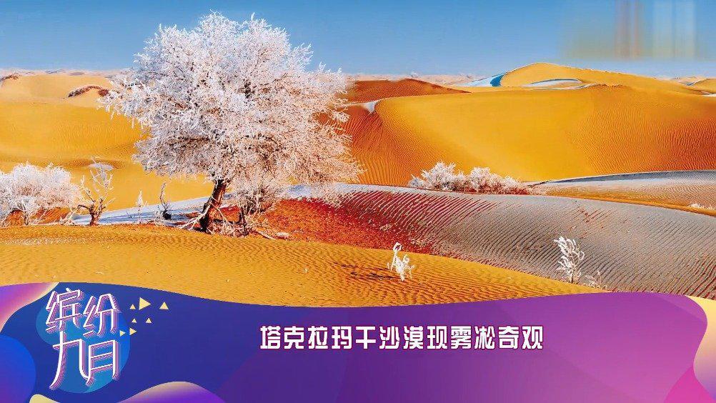 塔克拉玛干沙漠惊现雾凇奇观!简直,绝美……
