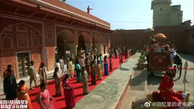 喜马拉雅星:不愧是喜马拉雅星,瑜伽比赛项项第一……