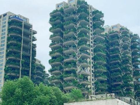 """成都首个""""第四代住宅"""",绿植爬满30层高楼"""