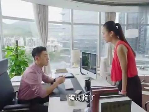 头号前妻:方总出事了,女助理劝韩彬赶紧分公司,趁人之危啊