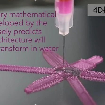 听胡幼奕讲述4D打印与建筑建材的故事