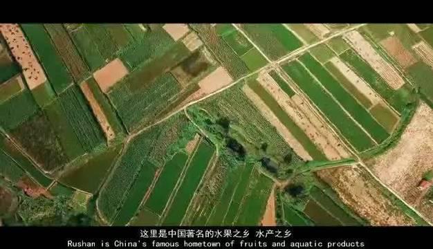 这里是乳山 中国著名的水果之乡水产之乡 拥有牡蛎 大姜 茶叶