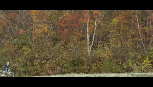 混剪丨电影里那些温柔治愈的秋天 视频cr网络