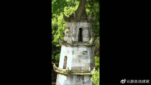 一座180年的古塔长出一棵参天大树……