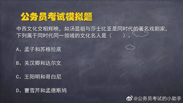 公务员考试题:下列属于同时代同一领域的文化名人是?
