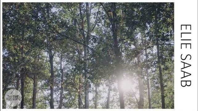 Elie Saab2020秋冬高定,森林里的仙女们!
