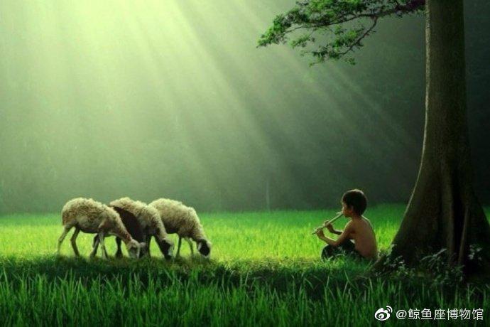 青苔隐山涧,晨曦穿林间。 牧童吹短笛,农夫锄良田