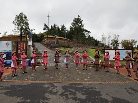 罗平县致力打造上海宝山区疗休养优质目的地携手促脱贫