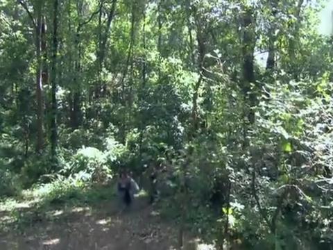 树林里出现神秘人物,流浪汉惊奇发现,早已死去的工人复活了