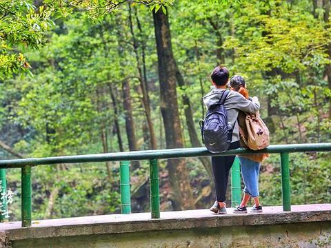 张家界旅游攻略——怎么选择合适的季节和时间点出行