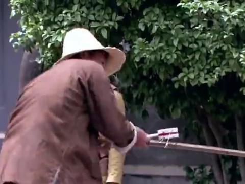 红樱剑:葛昌浩与恩师相见,两人虽然不同党派,但都是为国效力