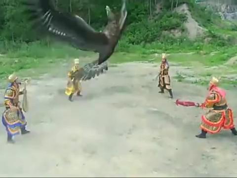 男子神通广大,化身成大鹏鸟,大战魔礼红的花狐貂