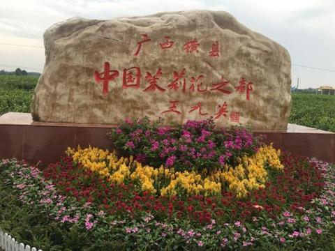 广西最香的县,随处茉莉飘香,或成下批设市的县,是你家乡吗?