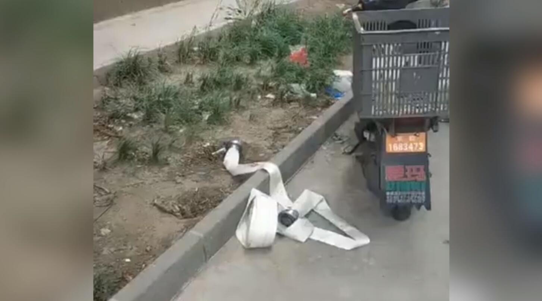 北京一六旬大爷高空扔消防水带受审 :我60多了 蹲不起监狱