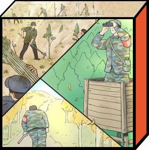 """硬核中国""""环保少女"""":放弃学业,去做林工"""