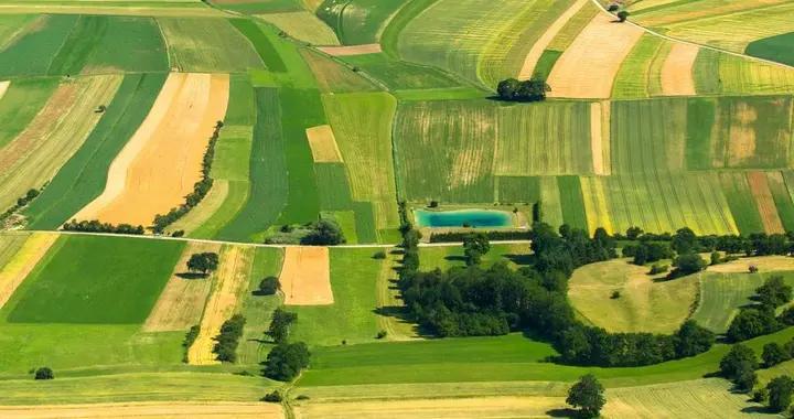 掌握全球耕地情况确保粮食安全,中国农科院实现一重大突破