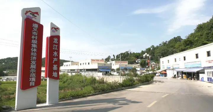 遵义红花岗区龙江村:抓标准 促规范 强发展