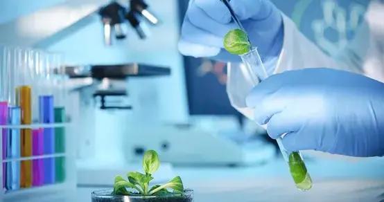 食品周报:达能拟在华投产特医食品厂;首个辣条专业班开办