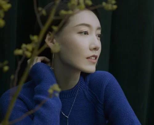 靳东又一现代剧来袭,合作实力派李乃文,吴越高露是配角