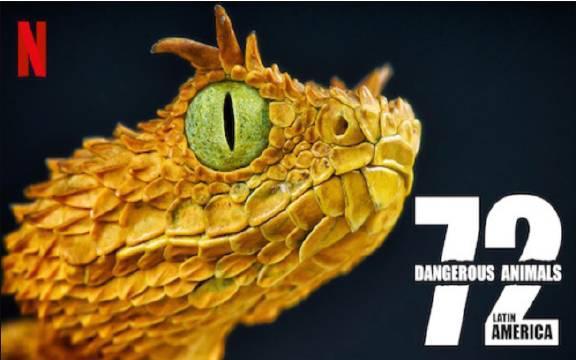 纪录片《72大危险动物:拉丁美洲篇》