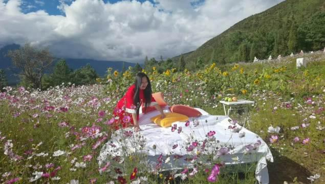 话说丽江旅拍 这个床那个床 都不及雪山下花海一床