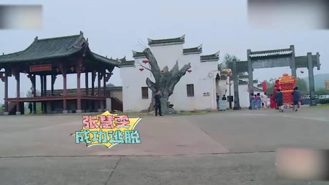 王耀庆发现张慧雯,谁料小姐姐直接飞身跳窗,这身手太迅捷了!