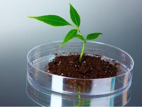 """生命起源有新进展,科学家发现""""负熵"""",量子力学已给出答案"""