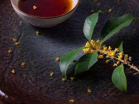 这3种花养在家里,让你的房间花香四溢,天然香氛